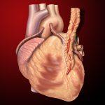 Açık Kalp Ameliyatı